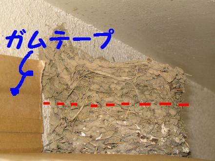20075821